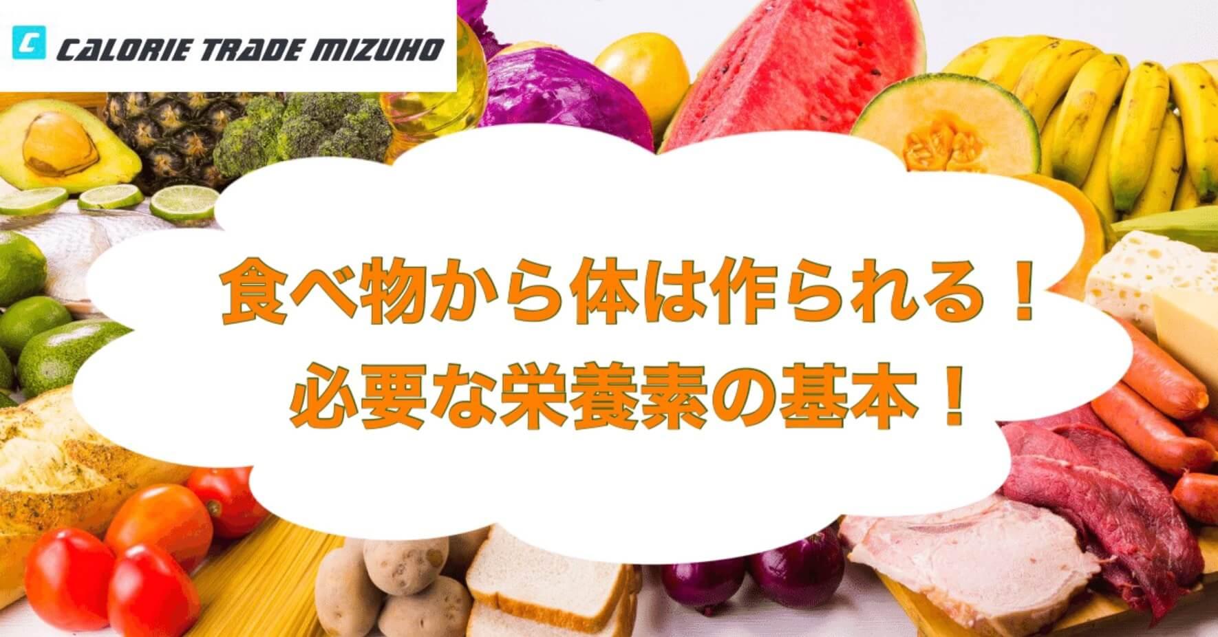 【バランスの良い食事を摂ろう】食べ物から体は作られる!必要な栄養素の基本!